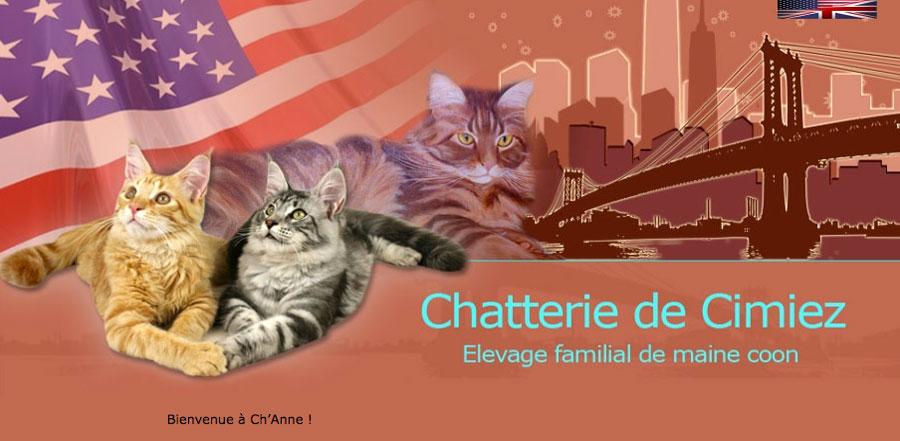 Bandeau d'accueil du site de la Chatterie de Cimiez